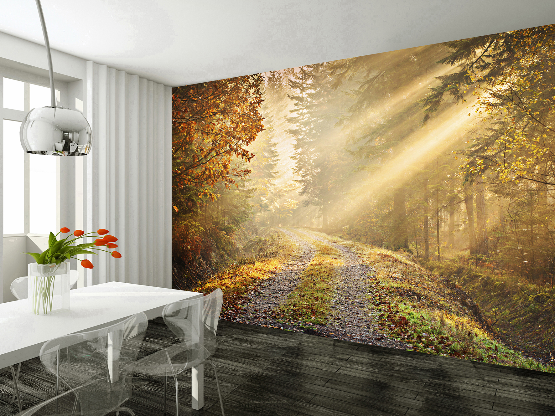 Wall mural autumn forest wallsorts for Beautiful wall mural