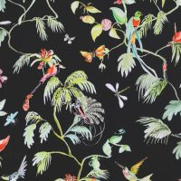 Birds of Paradise – Black